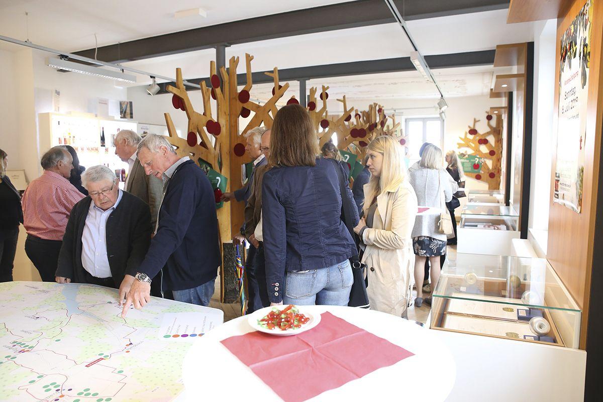 Brombachseer_Kirschenausstellung.001