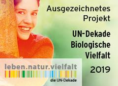 2019reg_UN-Dekade_Logo-240x175px